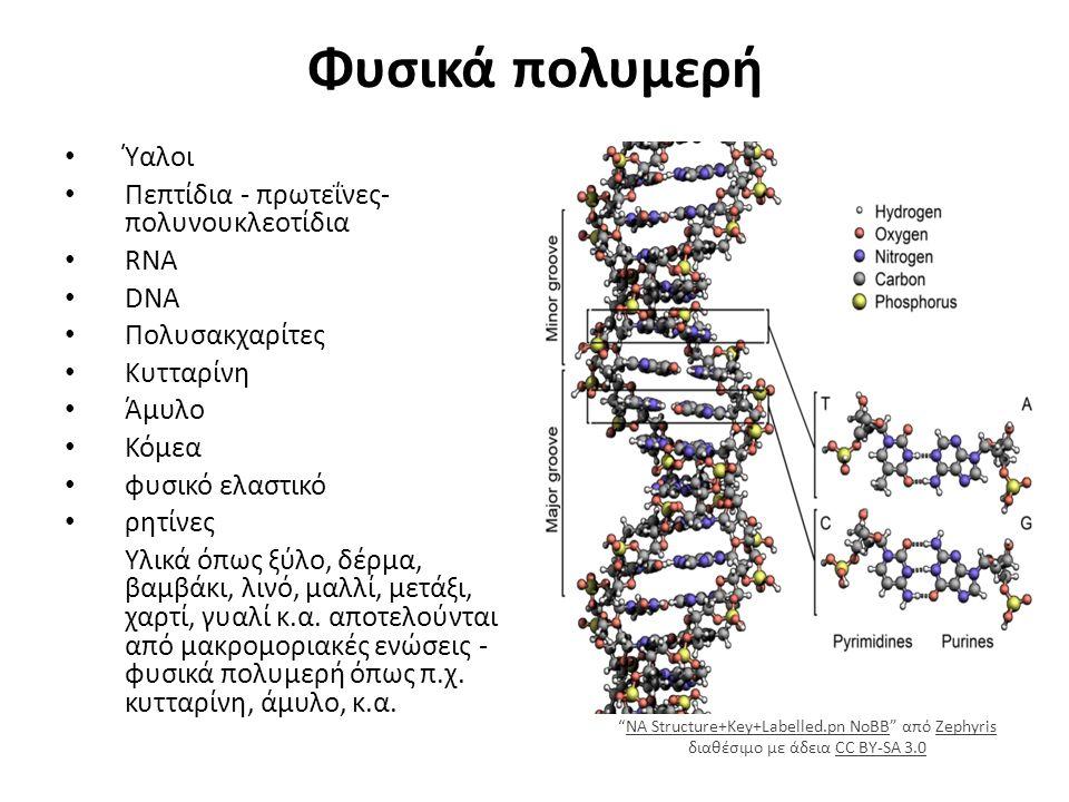 Φυσικά πολυμερή Ύαλοι Πεπτίδια - πρωτεΐνες- πολυνουκλεοτίδια RNA DNA Πολυσακχαρίτες Κυτταρίνη Άμυλο Κόμεα φυσικό ελαστικό ρητίνες Υλικά όπως ξύλο, δέρμα, βαμβάκι, λινό, μαλλί, μετάξι, χαρτί, γυαλί κ.α.