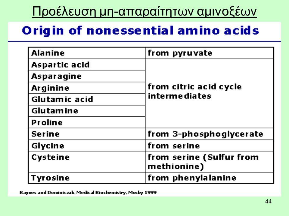 44 Προέλευση μη-απαραίτητων αμινοξέων