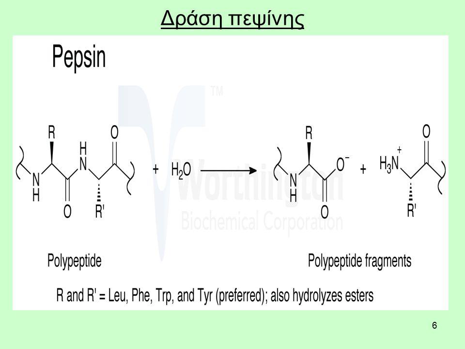 6 Δράση πεψίνης