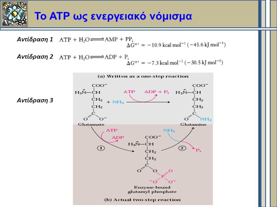 Το ΑΤΡ ως ενεργειακό νόμισμα Αντίδραση 1 Αντίδραση 2 Αντίδραση 3