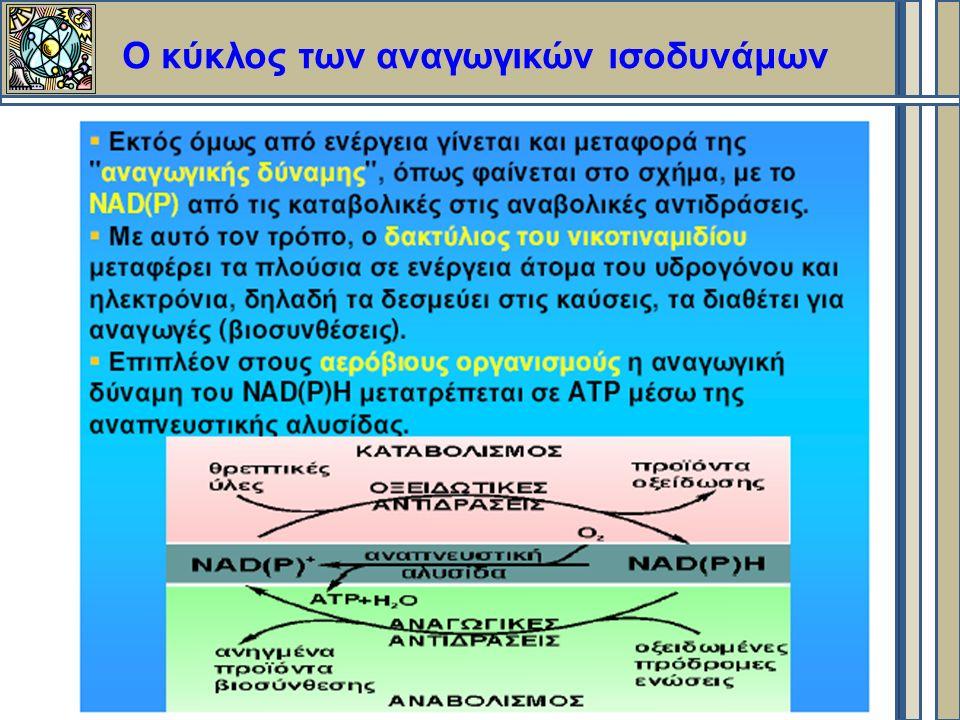 Ο κύκλος των αναγωγικών ισοδυνάμων