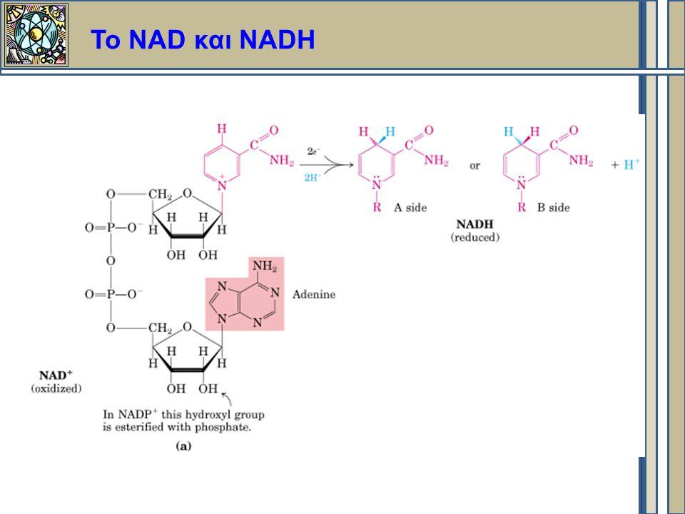 Το NAD και NADH