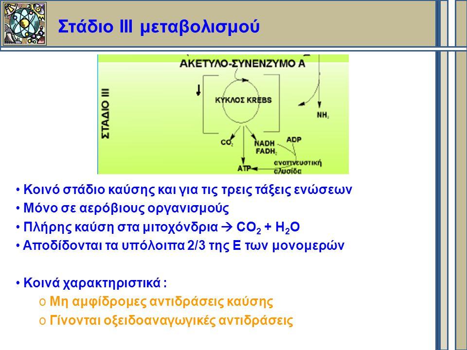 Στάδιο ΙII μεταβολισμού Κοινό στάδιο καύσης και για τις τρεις τάξεις ενώσεων Μόνο σε αερόβιους οργανισμούς Πλήρης καύση στα μιτοχόνδρια  CO 2 + H 2 O Αποδίδονται τα υπόλοιπα 2/3 της Ε των μονομερών Κοινά χαρακτηριστικά : o Μη αμφίδρομες αντιδράσεις καύσης o Γίνονται οξειδοαναγωγικές αντιδράσεις