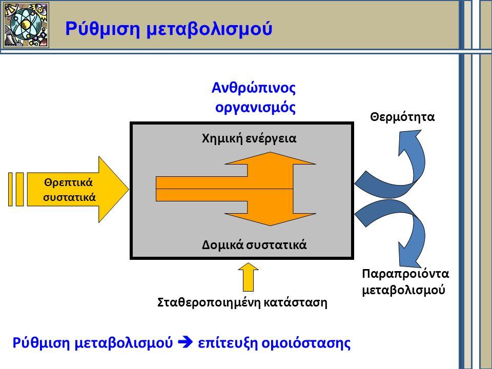 Ρύθμιση μεταβολισμού Θρεπτικά συστατικά Χημική ενέργεια Δομικά συστατικά Θερμότητα Παραπροιόντα μεταβολισμού Ανθρώπινος οργανισμός Ρύθμιση μεταβολισμού  επίτευξη ομοιόστασης Σταθεροποιημένη κατάσταση