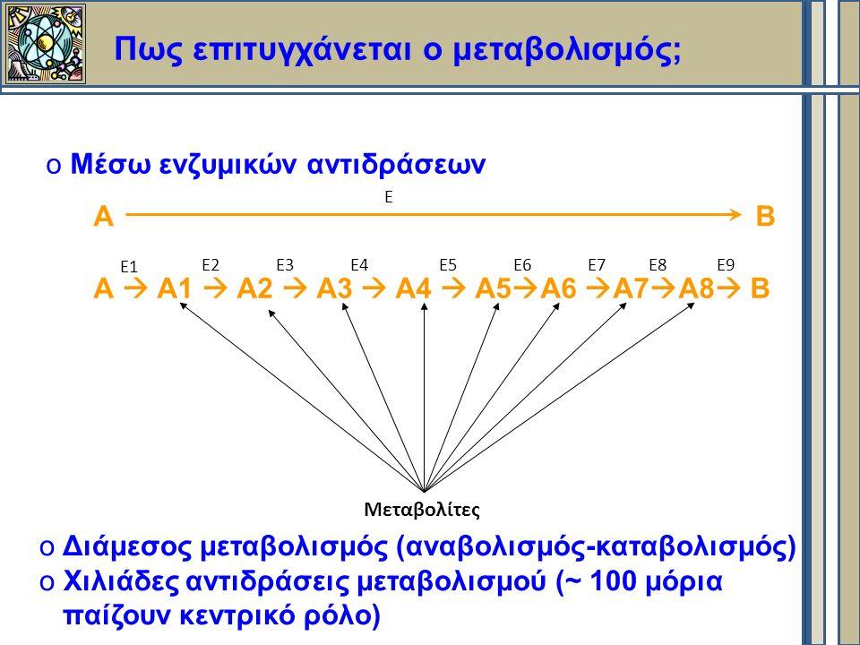 Πως επιτυγχάνεται ο μεταβολισμός; o Μέσω ενζυμικών αντιδράσεων Α Β Α  Α1  Α2  Α3  Α4  Α5  Α6  Α7  Α8  Β Ε1 Ε3Ε4Ε5Ε6Ε7Ε8Ε9Ε2 Μεταβολίτες o Διάμεσος μεταβολισμός (αναβολισμός-καταβολισμός) o Χιλιάδες αντιδράσεις μεταβολισμού (~ 100 μόρια παίζουν κεντρικό ρόλο) Ε