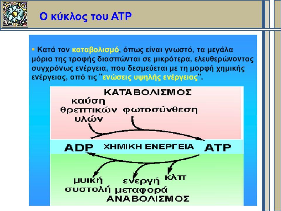Ο κύκλος του ΑΤΡ