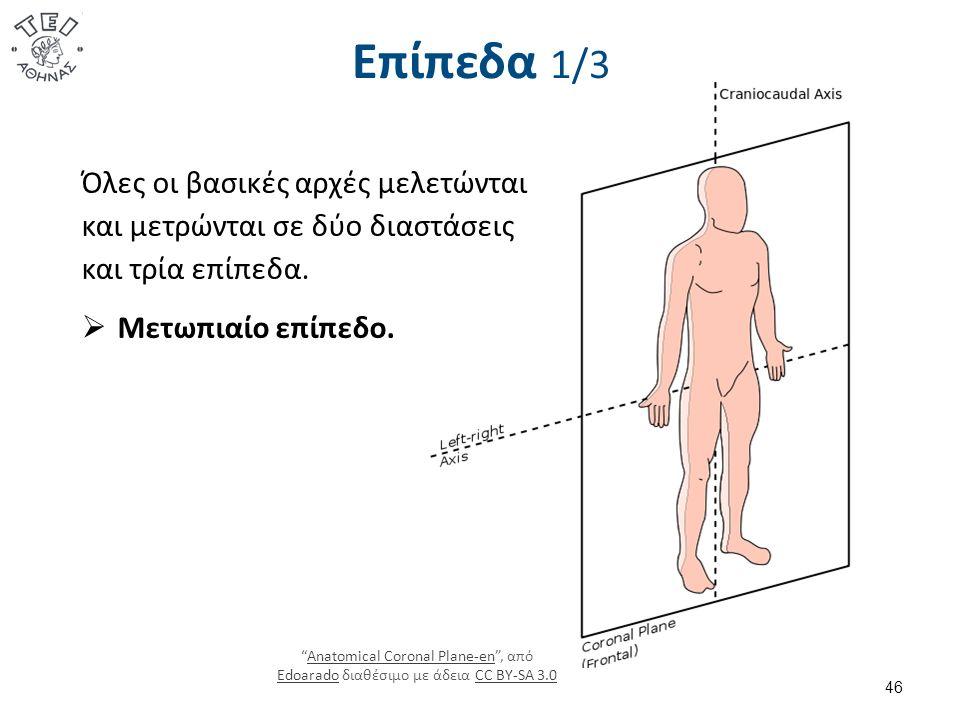 Επίπεδα 1/3 Anatomical Coronal Plane-en , από Edoarado διαθέσιμο με άδεια CC BY-SA 3.0Anatomical Coronal Plane-en EdoaradoCC BY-SA 3.0 46 Όλες οι βασικές αρχές μελετώνται και μετρώνται σε δύο διαστάσεις και τρία επίπεδα.