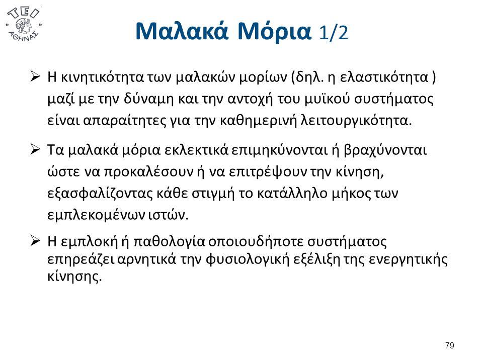 Μαλακά Μόρια 1/2  Η κινητικότητα των μαλακών μορίων (δηλ.