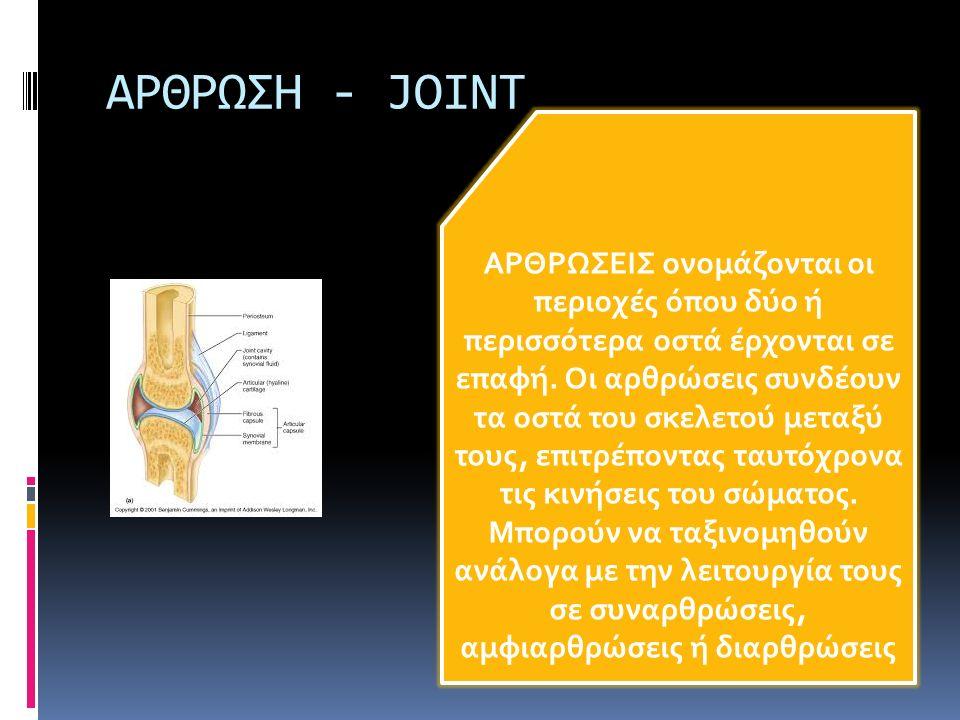ΑΡΘΡΩΣΗ - JOINT ΑΡΘΡΩΣΕΙΣ ονομάζονται οι περιοχές όπου δύο ή περισσότερα οστά έρχονται σε επαφή. Οι αρθρώσεις συνδέουν τα οστά του σκελετού μεταξύ του