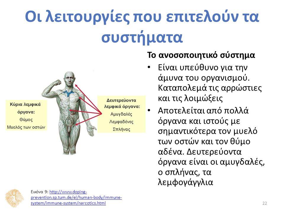Το ανοσοποιητικό σύστημα Είναι υπεύθυνο για την άμυνα του οργανισμού.