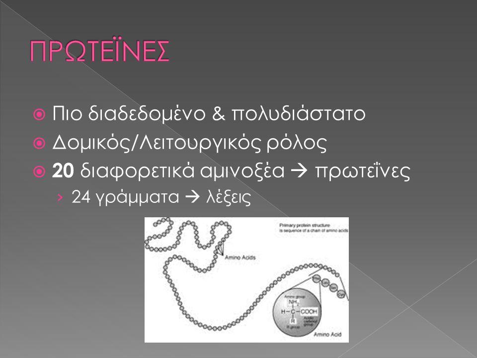  Πιο διαδεδομένο & πολυδιάστατο  Δομικός/Λειτουργικός ρόλος  20 διαφορετικά αμινοξέα  πρωτεΐνες › 24 γράμματα  λέξεις