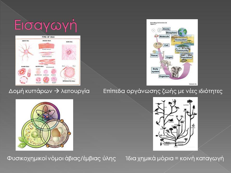 Δομή κυττάρων  λειτουργία Επίπεδα οργάνωσης ζωής με νέες ιδιότητες Φυσικοχημικοί νόμοι άβιας/έμβιας ύληςΊδια χημικά μόρια = κοινή καταγωγή