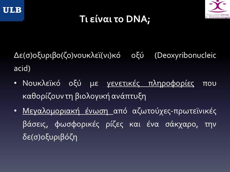 Τι είναι το DNA; Δε(σ)οξυριβο(ζο)νουκλεϊ(νι)κό οξύ (Deoxyribonucleic acid) Νουκλεϊκό οξύ με γενετικές πληροφορίες που καθορίζουν τη βιολογική ανάπτυξη Μεγαλομοριακή ένωση από αζωτούχες-πρωτεϊνικές βάσεις, φωσφορικές ρίζες και ένα σάκχαρο, την δε(σ)οξυριβόζη