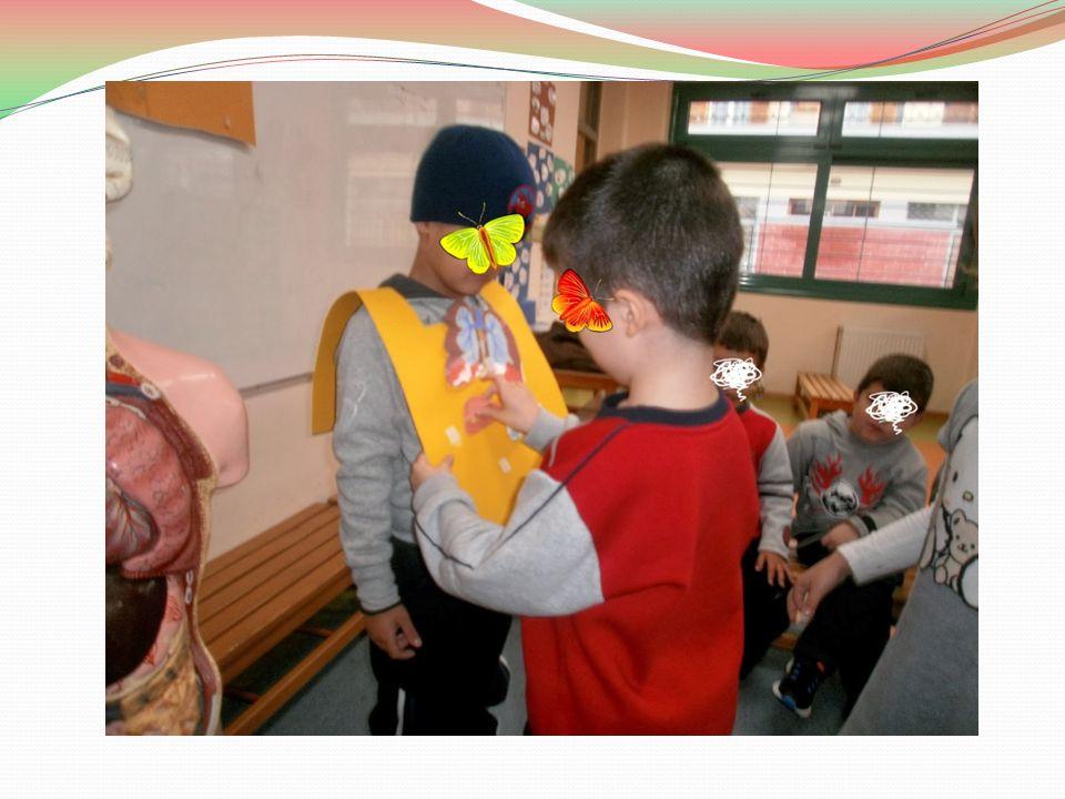 Γνωρίζοντας το ανθρώπινο σώμα (2) Μετά από αυτές τις δραστηριότητες δείχνουμε στα παιδιά εικόνες του ανθρωπίνου σώματος.