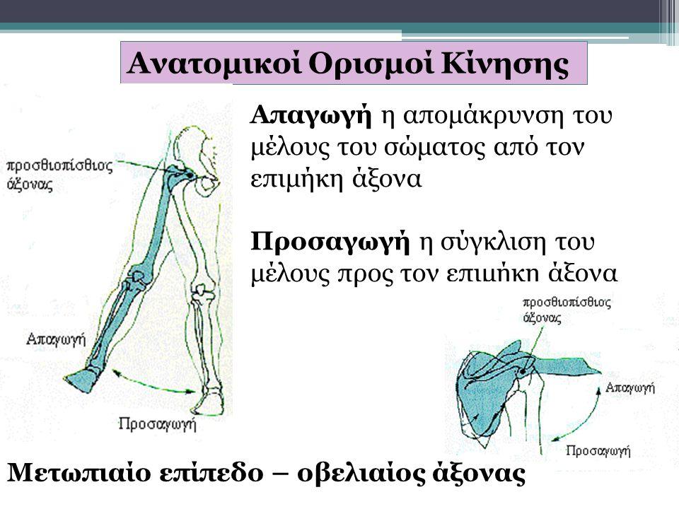 Ανατομικοί Ορισμοί Κίνησης Απαγωγή η απομάκρυνση του μέλους του σώματος από τον επιμήκη άξονα Προσαγωγή η σύγκλιση του μέλους προς τον επιμήκη άξονα Μετωπιαίο επίπεδο – οβελιαίος άξονας