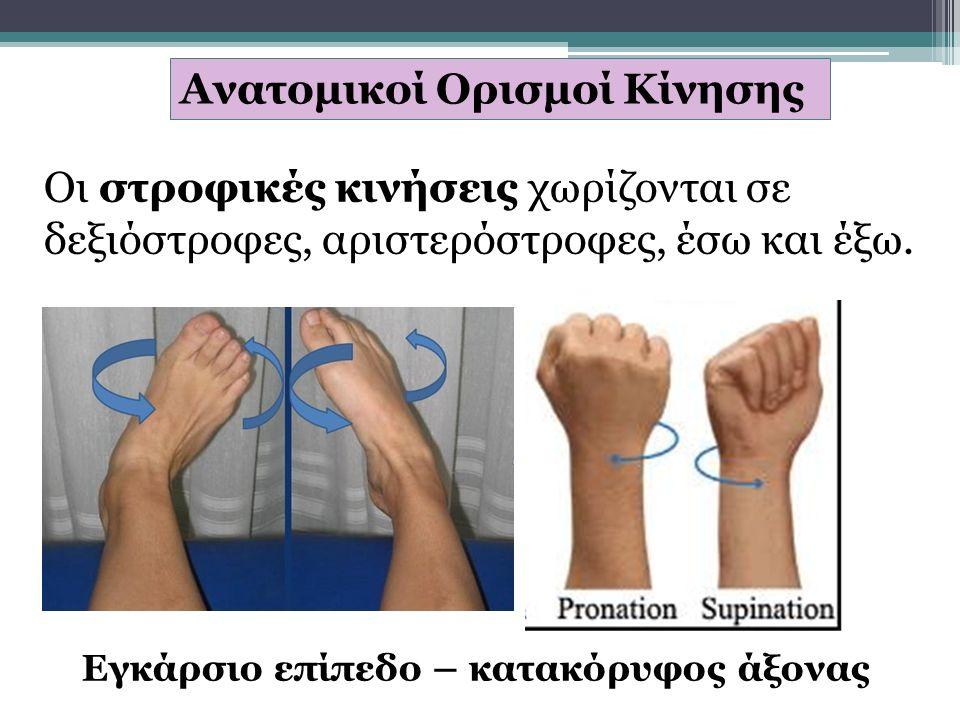 Ανατομικοί Ορισμοί Κίνησης Οι στροφικές κινήσεις χωρίζονται σε δεξιόστροφες, αριστερόστροφες, έσω και έξω.