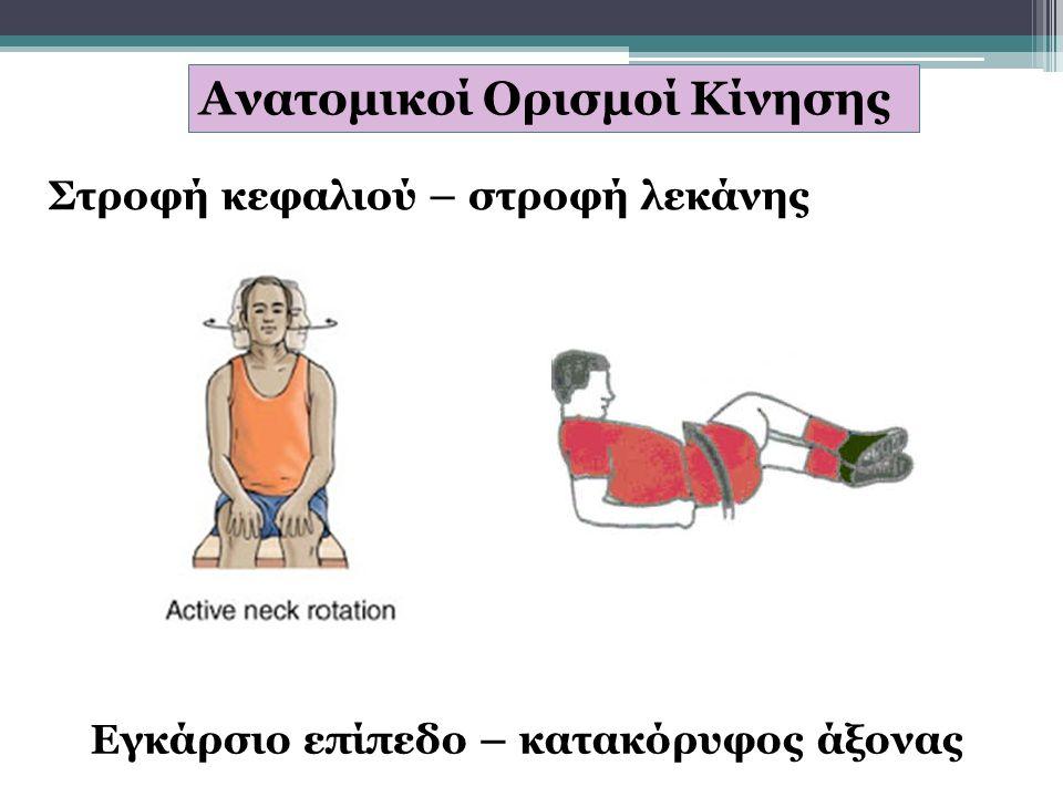 Ανατομικοί Ορισμοί Κίνησης Στροφή κεφαλιού – στροφή λεκάνης Εγκάρσιο επίπεδο – κατακόρυφος άξονας