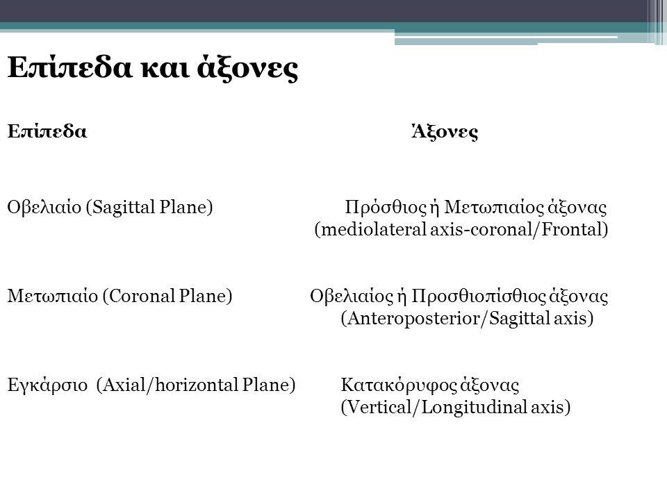 Επίπεδα και άξονες Επίπεδα Άξονες Οβελιαίο (Sagittal Plane) Πρόσθιος ή Μετωπιαίος άξονας (mediolateral axis-coronal/Frontal) Μετωπιαίο (Coronal Plane) Οβελιαίος ή Προσθιοπίσθιος άξονας (Anteroposterior/Sagittal axis) Εγκάρσιο (Axial/horizontal Plane)Κατακόρυφος άξονας (Vertical/Longitudinal axis)