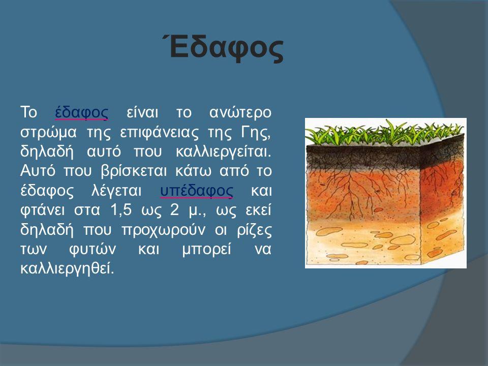 Έδαφος Το έδαφος είναι το ανώτερο στρώμα της επιφάνειας της Γης, δηλαδή αυτό που καλλιεργείται.