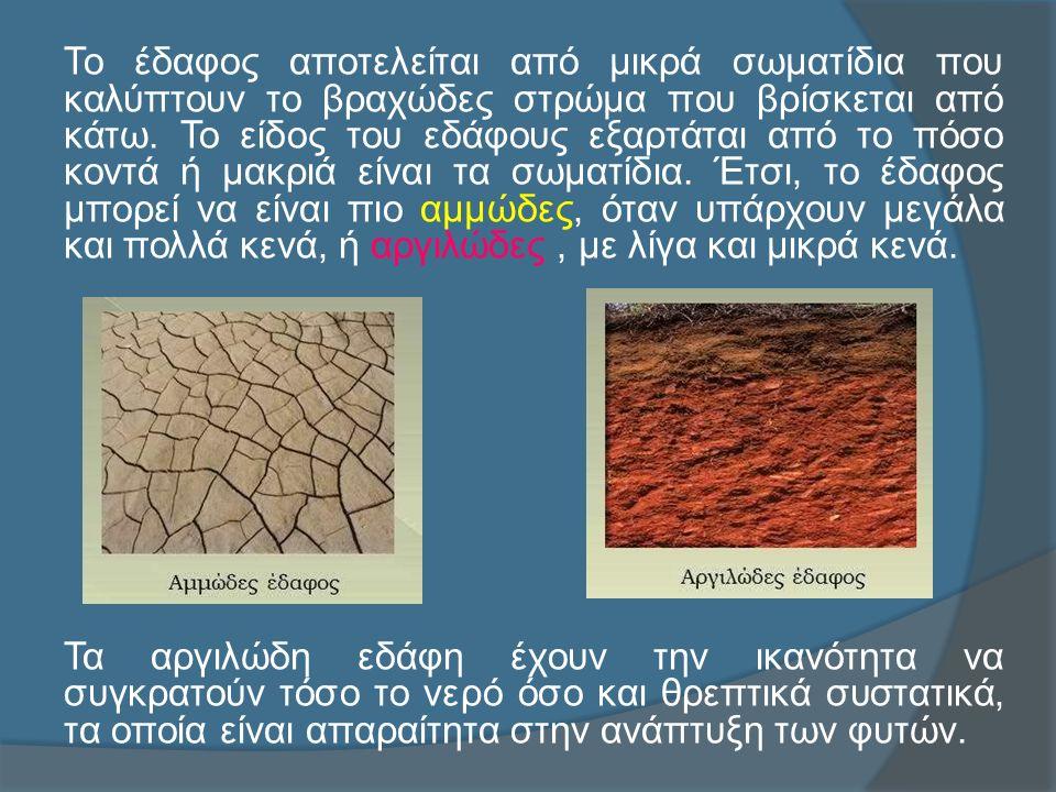 Το έδαφος αποτελείται από μικρά σωματίδια που καλύπτουν το βραχώδες στρώμα που βρίσκεται από κάτω.