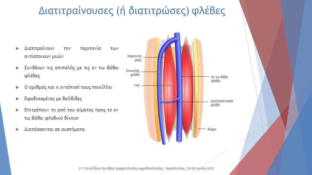 Σαφηνομηριαία συμβολή Σύστημα Dodd Σύστημα Boyd Σύστημα Cockett Μεταξύ μείζονος σαφηνούς και μηριαίας φλέβας Διατιτραίνουσες (ή διατιτρώσες) φλέβες  Του ανώτερου τριτημορίου του μηρού  μεταξύ της μείζονος σαφηνούς και της μηριαίας φλέβας  Σύστημα του Dodd  τρεις διατιτραίνουσες  συνδέει τη μείζονα σαφηνή με τη μηριαία φλέβα  Σύστημα του Boyd  εντοπίζεται στην έσω επιφάνεια του μηρού 2 και 6cm πάνω από την άρθρωση του γόνατος  συχνά αποτελεί περιοχή ανάπτυξης κιρσών  Σύστημα του Cockett  αποτελείται από 3 διατιτραίνουσες  εντοπίζεται στην εσωτερική επιφάνεια της κνήμης  13, 18 και 25cm άνωθεν του πέλματος  συνδέει την οπίσθια τοξοειδή φλέβα (κλάδο της μείζονος σαφηνούς), με τις οπίσθιες κνημιαίες φλέβες 11 ο Πανελλήνιο Συνέδριο Δερματολογίας-Αφροδισιολογίας, Θεσσαλονίκη, 25-28 Ιουνίου 2015