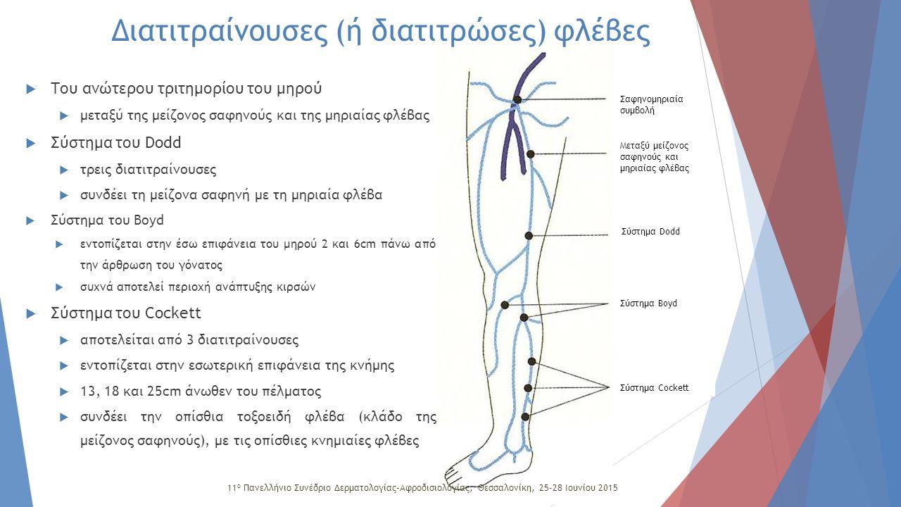 Σαφηνομηριαία συμβολή Σύστημα Dodd Σύστημα Boyd Σύστημα Cockett Μεταξύ μείζονος σαφηνούς και μηριαίας φλέβας Διατιτραίνουσες (ή διατιτρώσες) φλέβες 