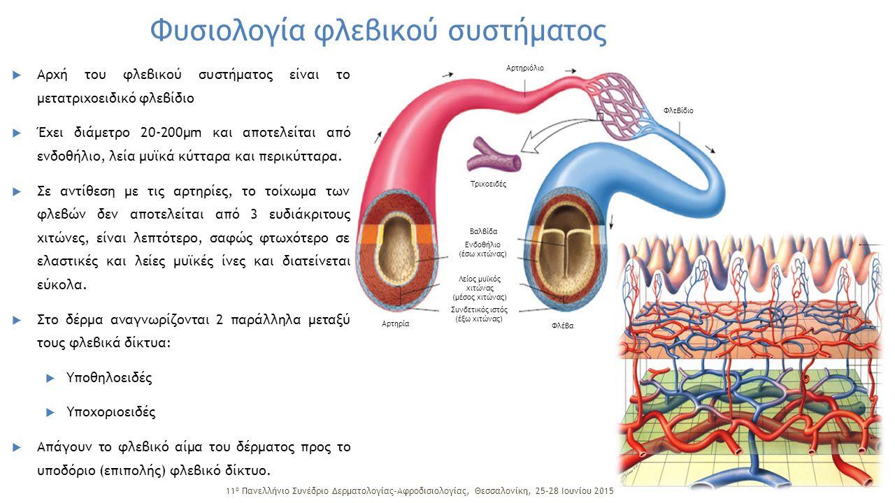 Παράγοντες που ρυθμίζουν τη ροή αίματος και πίεση στο φλεβικό σύστημα των κάτω άκρων:  Λειτουργική δραστηριότητα καρδιάς και πνευμόνων  Πίεση στο αρχικό τμήμα του φλεβικού συστήματος  Αρνητική πίεση κατά την εισπνοή  Διαστολική φάση της λειτουργίας της δεξιάς κοιλίας  Τόνος και σύσπαση των μυϊκών μαζών  Λειτουργική δραστηριότητα των φλεβικών βαλβίδων Από αυτούς οι σημαντικότεροι παράγοντες για την ανατομική και λειτουργική ακεραιότητα του δικτύου των κάτω άκρων είναι η μυϊκή αντλία και οι φλεβικές βαλβίδες.