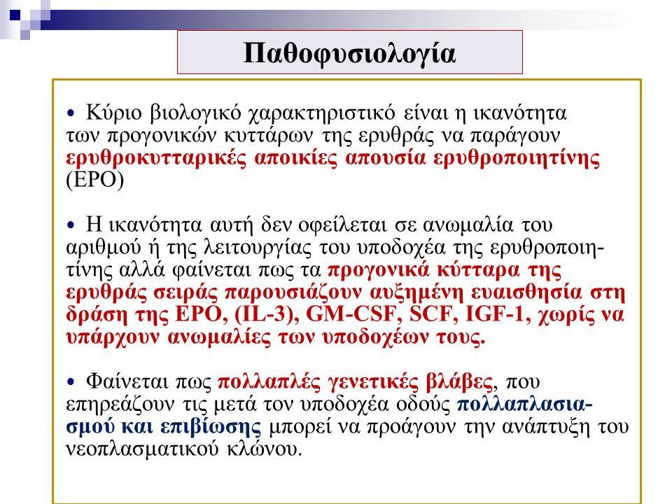 Παθοφυσιολογία Κύριο βιολογικό χαρακτηριστικό είναι η ικανότητα των προγονικών κυττάρων της ερυθράς να παράγουν ερυθροκυτταρικές αποικίες απουσία ερυθροποιητίνης (EPO) Η ικανότητα αυτή δεν οφείλεται σε ανωμαλία του αριθμού ή της λειτουργίας του υποδοχέα της ερυθροποιη- τίνης αλλά φαίνεται πως τα προγονικά κύτταρα της ερυθράς σειράς παρουσιάζουν αυξημένη ευαισθησία στη δράση της ΕΡΟ, (IL-3), GM-CSF, SCF, IGF-1, χωρίς να υπάρχουν ανωμαλίες των υποδοχέων τους.