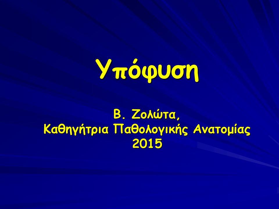 Υπόφυση Β. Ζολώτα, Καθηγήτρια Παθολογικής Ανατομίας 2015