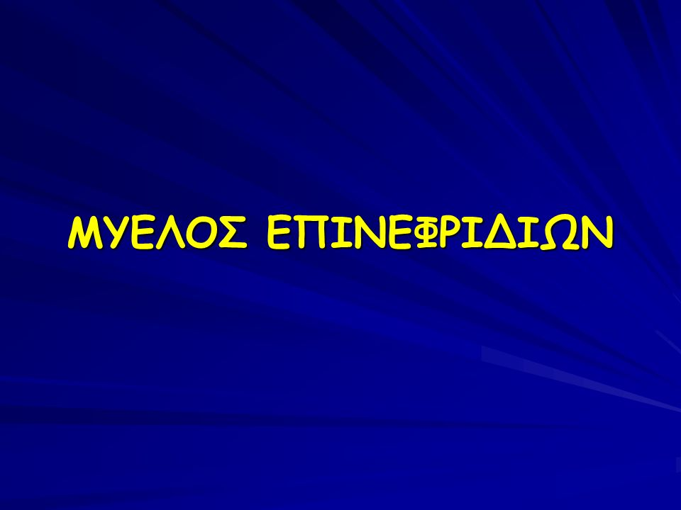 ΜΥΕΛΟΣ ΕΠΙΝΕΦΡΙΔΙΩΝ