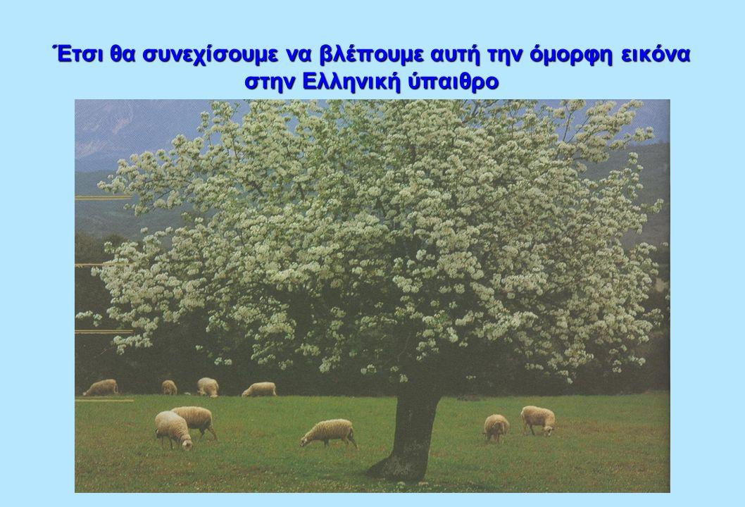 Έτσι θα συνεχίσουμε να βλέπουμε αυτή την όμορφη εικόνα στην Ελληνική ύπαιθρο
