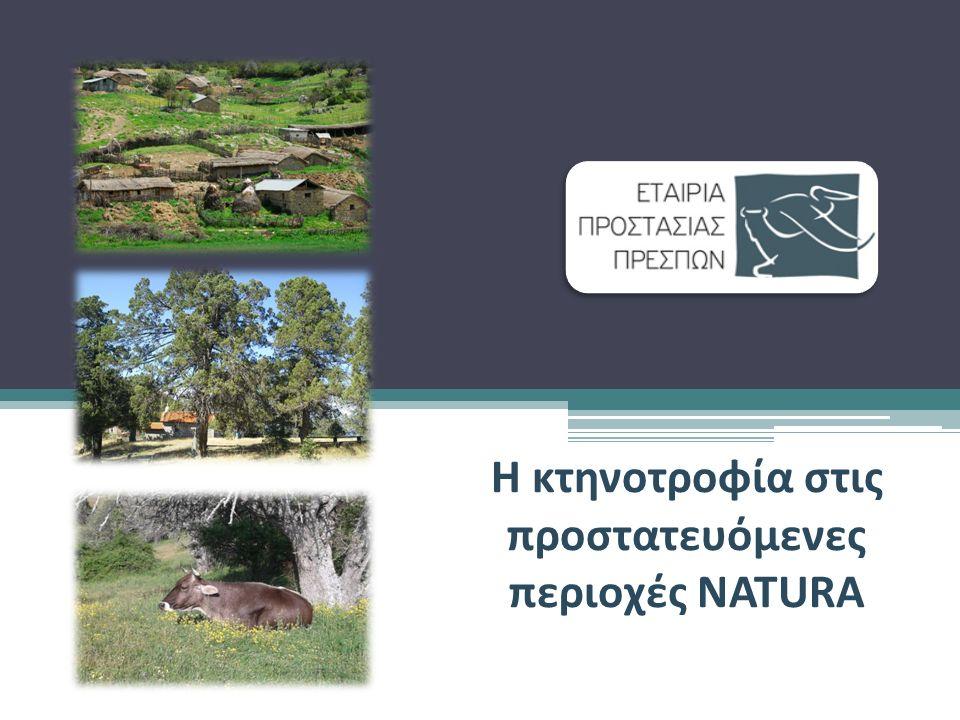 Πανευρωπαϊκό δίκτυο για την προστασία των ειδών και οικοτόπων που περιλαμβάνονται στις λίστες της Οδηγίας των Οικοτόπων (92/43) και της Οδηγίας για τα Πουλιά (79/409) Γεωγραφικές περιοχές της ΕΕ με σπουδαία οικολογική σημασία Οικότοποι και είδη προτεραιότητας που διατρέχουν κίνδυνο εξαφάνισης Περιοχές NATURA 2000 Η κτηνοτροφία στις προστατευόμενες περιοχές NATURA