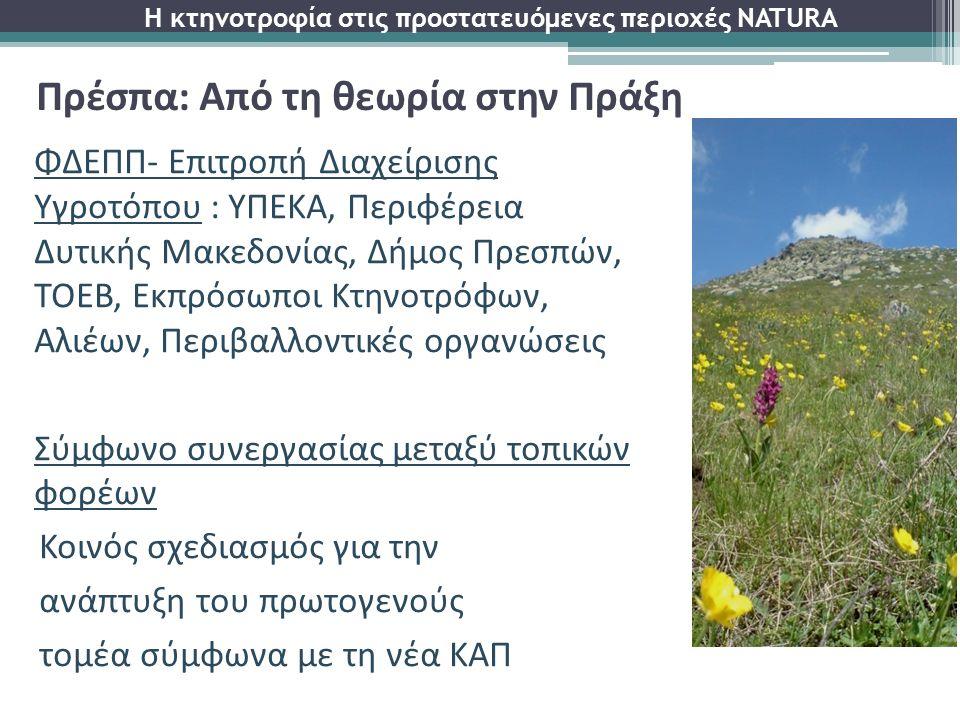 ΦΔΕΠΠ- Επιτροπή Διαχείρισης Υγροτόπου : ΥΠΕΚΑ, Περιφέρεια Δυτικής Μακεδονίας, Δήμος Πρεσπών, ΤΟΕΒ, Εκπρόσωποι Κτηνοτρόφων, Αλιέων, Περιβαλλοντικές οργ