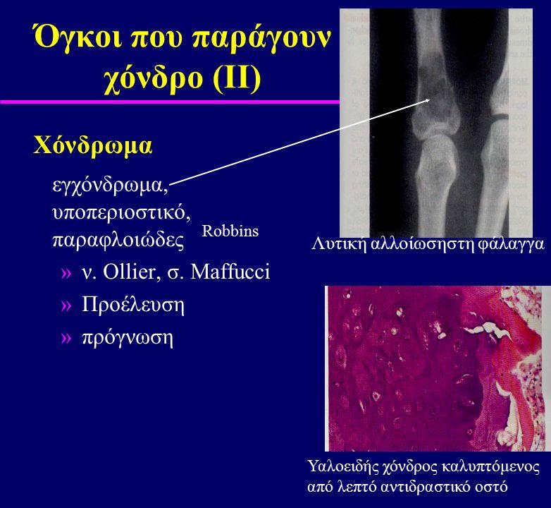 Όγκοι που παράγουν χόνδρο (ΙΙ) Χόνδρωμα εγχόνδρωμα, υποπεριοστικό, παραφλοιώδες »ν. Ollier, σ. Maffucci »Προέλευση »πρόγνωση Robbins Λυτική αλλοίωσηστ