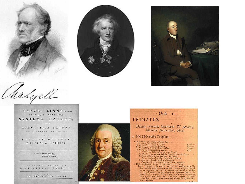 Η ώρα της Φυσικής επιλογής Charles Darwin (1809-1882) & Αlfred Wallace (1823-1913) Μορφοποιούν τη σύγχρονη, παραδεκτή θεωρία της εξέλιξης Οι αντιλήψεις τους αλλάζουν οριστικά τις αντιλήψεις μας για τη ζωή στον πλανήτη Ποιά ήταν τα στοιχεία πρωτοτυπίας τους; Παρατήρηση της ποικιλότητας σε ένα ευρύ φάσμα ενδιαιτημάτων Ο Δαρβίνος Σε ηλικία 22 ετών (1831) ταξιδεύει για 5 χρόνια με το πλοίο HMS Beagle κάνοντας τον γύρω του κόσμου Ο Wallace ταξιδεύει στον Αμαζόνιο και κάνει τις παρατηρήσεις του κύρια στο αρχιπέλαγος της Μαλαισίας.