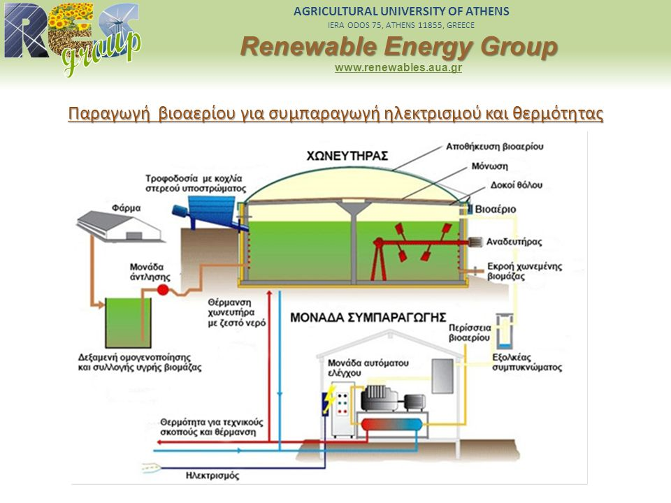 AGRICULTURAL UNIVERSITY OF ATHENS IERA ODOS 75, ATHENS 11855, GREECE Renewable Energy Group www.renewables.aua.gr Παραγωγή βιοαερίου για συμπαραγωγή η