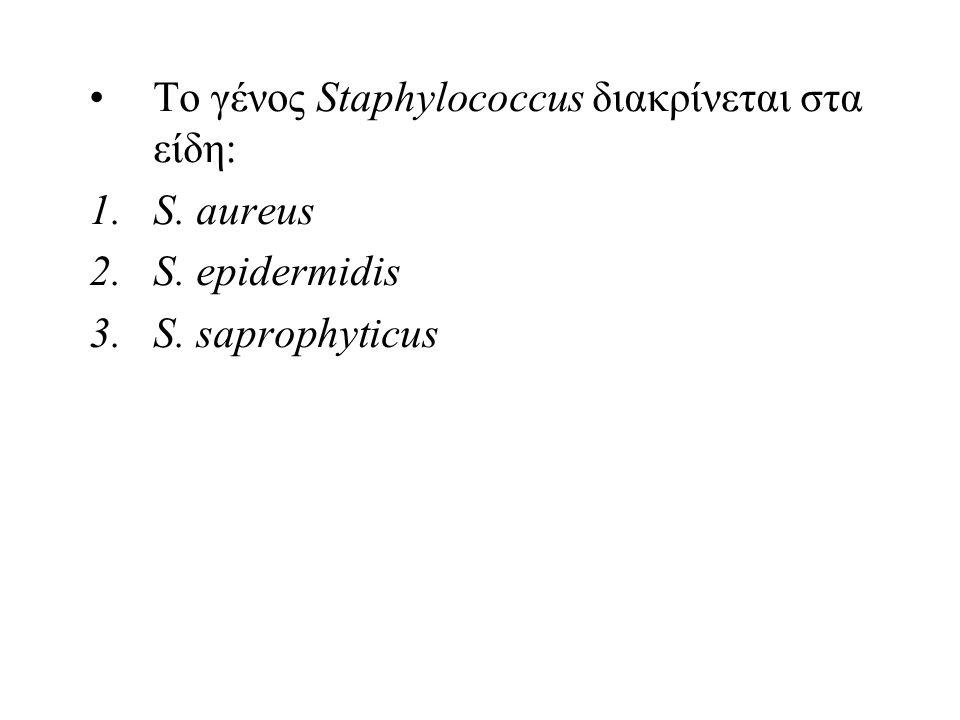 Το γένος Staphylococcus διακρίνεται στα είδη: 1.S. aureus 2.S. epidermidis 3.S. saprophyticus
