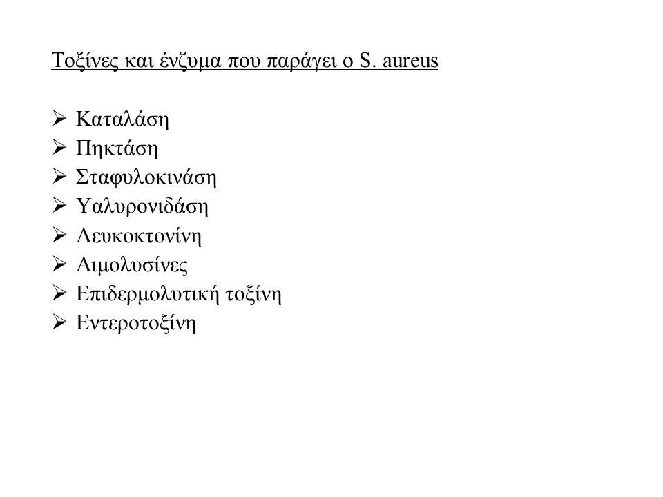 Τοξίνες και ένζυμα που παράγει ο S.