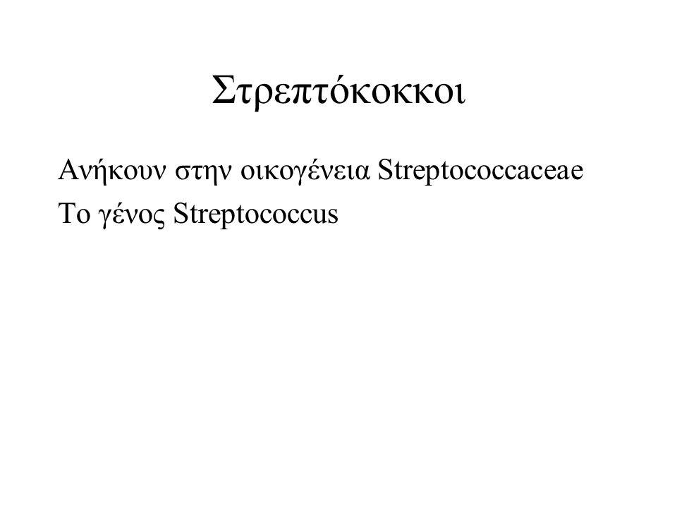 Στρεπτόκοκκοι Ανήκουν στην οικογένεια Streptococcaceae Το γένος Streptococcus