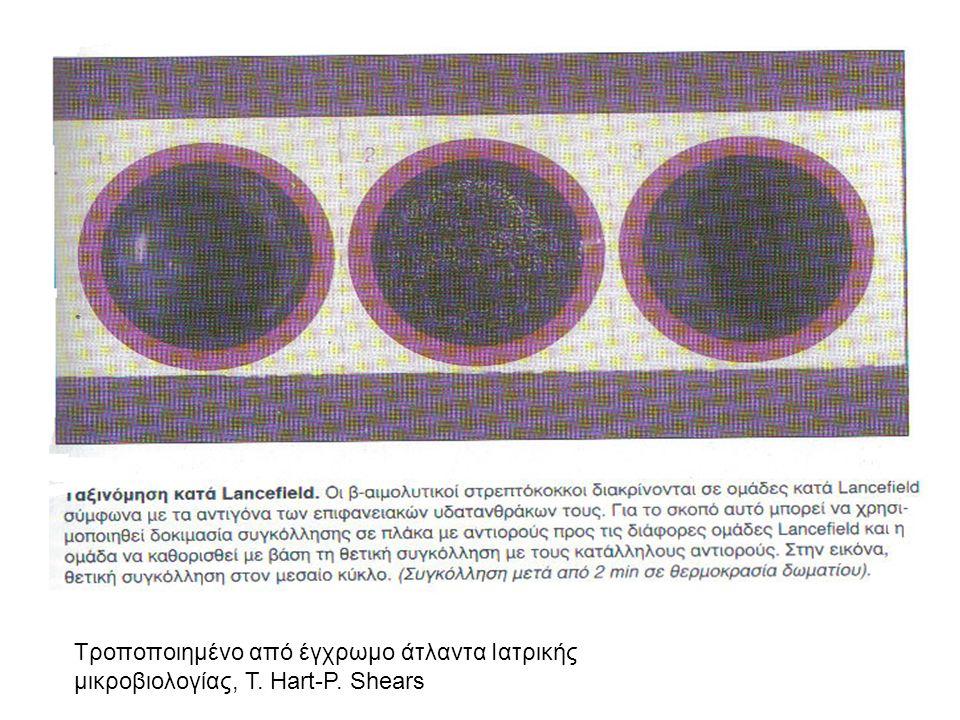 Τροποποιημένο από έγχρωμο άτλαντα Ιατρικής μικροβιολογίας, T. Hart-P. Shears