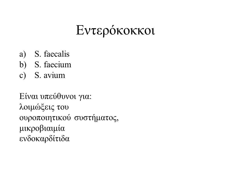 Εντερόκοκκοι a)S.faecalis b)S. faecium c)S.