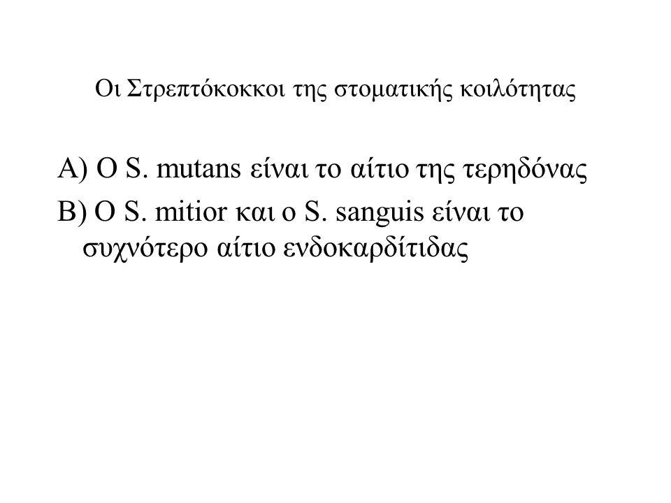 Οι Στρεπτόκοκκοι της στοματικής κοιλότητας Α) Ο S.