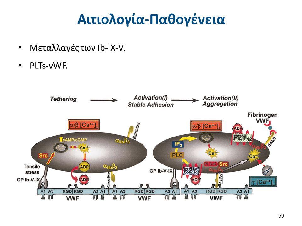 Αιτιολογία-Παθογένεια Μεταλλαγές των Ib-IX-V. PLTs-vWF. 59