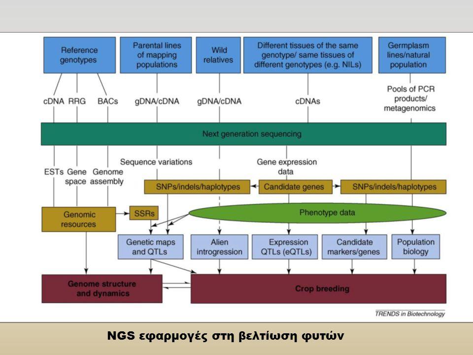 NGS εφαρμογές στη βελτίωση φυτών