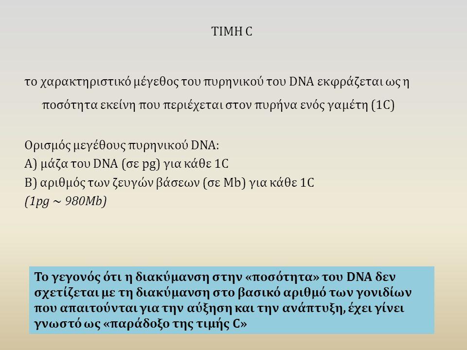 ΤΙΜΗ C το χαρακτηριστικό μέγεθος του πυρηνικού του DNA εκφράζεται ως η ποσότητα εκείνη που περιέχεται στον πυρήνα ενός γαμέτη (1C) Ορισμός μεγέθους πυρηνικού DNA: Α) μάζα του DNA (σε pg) για κάθε 1C Β) αριθμός των ζευγών βάσεων (σε Mb) για κάθε 1C (1pg ~ 980Mb) Το γεγονός ότι η διακύμανση στην «ποσότητα» του DNA δεν σχετίζεται με τη διακύμανση στο βασικό αριθμό των γονιδίων που απαιτούνται για την αύξηση και την ανάπτυξη, έχει γίνει γνωστό ως «παράδοξο της τιμής C»