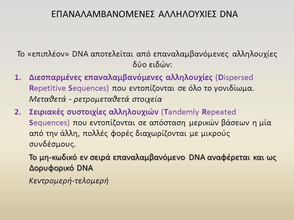 Το «επιπλέον» DNA αποτελείται από επαναλαμβανόμενες αλληλουχίες δύο ειδών: 1.Διεσπαρμένες επαναλαμβανόμενες αλληλουχίες (Dispersed Repetitive Sequences) που εντοπίζονται σε όλο το γονιδίωμα.