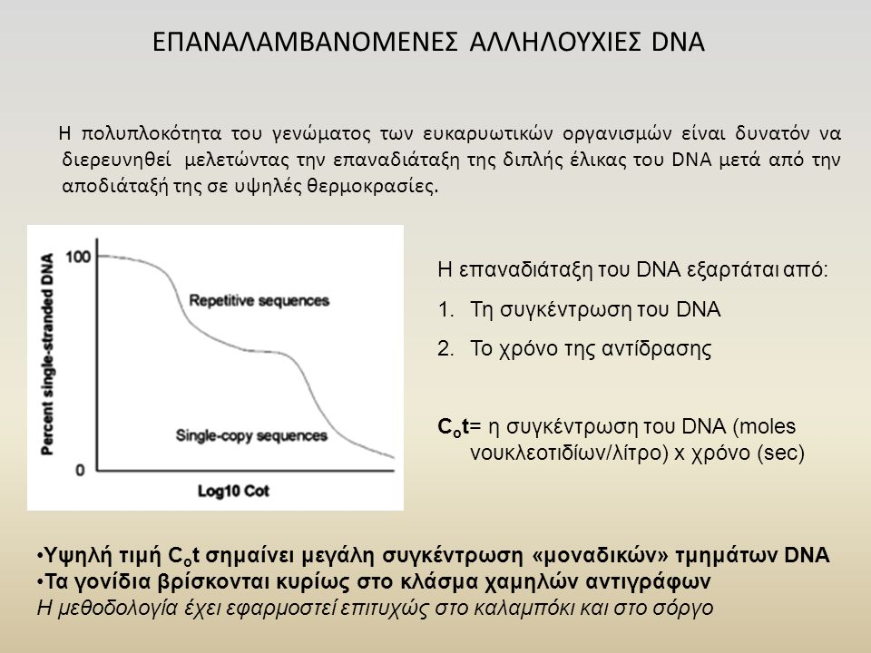 Η πολυπλοκότητα του γενώματος των ευκαρυωτικών οργανισμών είναι δυνατόν να διερευνηθεί μελετώντας την επαναδιάταξη της διπλής έλικας του DNA μετά από την αποδιάταξή της σε υψηλές θερμοκρασίες.