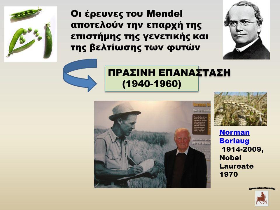 Οι έρευνες του Mendel αποτελούν την επαρχή της επιστήμης της γενετικής και της βελτίωσης των φυτών Norman Borlaug 1914-2009, Nobel Laureate 1970 ΠΡΑΣΙΝΗ ΕΠΑΝΑΣΤΑΣΗ (1940-1960) ΠΡΑΣΙΝΗ ΕΠΑΝΑΣΤΑΣΗ (1940-1960)