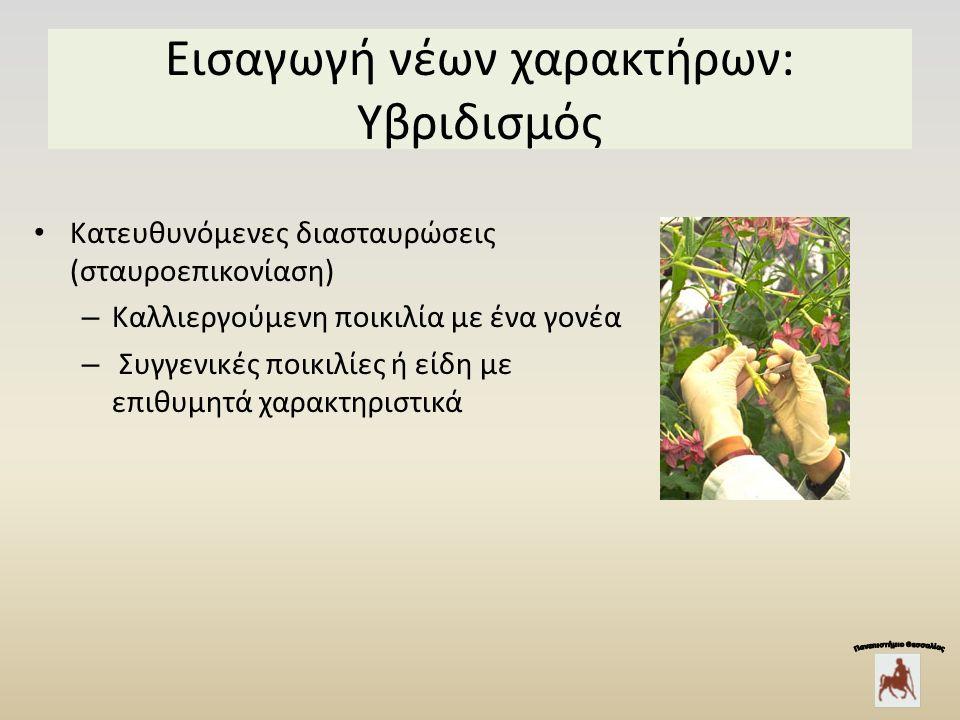 Εισαγωγή νέων χαρακτήρων: Υβριδισμός Κατευθυνόμενες διασταυρώσεις (σταυροεπικονίαση) – Καλλιεργούμενη ποικιλία με ένα γονέα – Συγγενικές ποικιλίες ή είδη με επιθυμητά χαρακτηριστικά