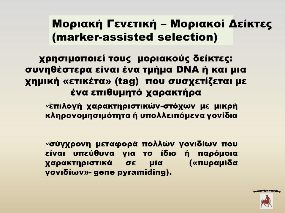 Mοριακή Γενετική – Μοριακοί Δείκτες (marker-assisted selection) χρησιμοποιεί τους μοριακούς δείκτες: συνηθέστερα είναι ένα τμήμα DΝΑ ή και μια χημική «ετικέτα» (tag) που συσχετίζεται με ένα επιθυμητό χαρακτήρα επιλογή χαρακτηριστικών-στόχων με μικρή κληρονομησιμότητα ή υπολλειπόμενα γονίδια σύγχρονη μεταφορά πολλών γονιδίων που είναι υπεύθυνα για το ίδιο ή παρόμοια χαρακτηριστικά σε μία («πυραμίδα γονιδίων»- gene pyramiding).